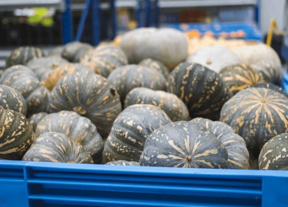 Pumpkins waste not want not